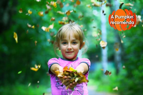 comeca-o-outono-mas-com-calor-o-nosso-t2-blog